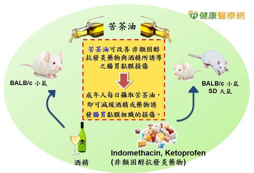 研究證實:苦茶油可緩解急性胃黏膜損傷