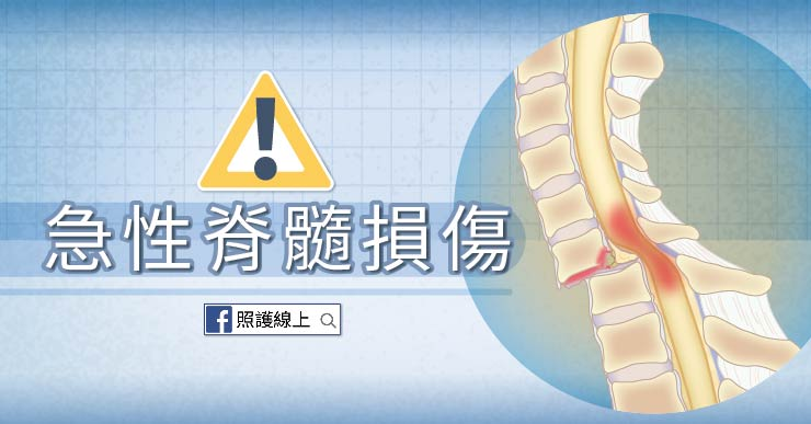 出事別亂搖傷者 – 急性脊髓損傷(懶人包)