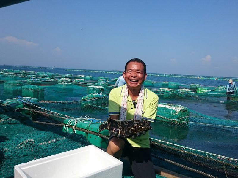 海水箱網養殖 用天然的環境孕育出健康魚