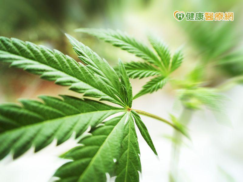 青少年罹患憂鬱症 成年後易食用大麻成癮