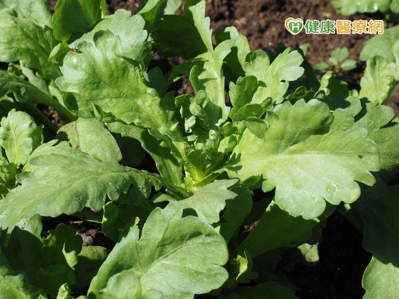 年節食品抽驗 茼蒿農藥殘留超標_圖1