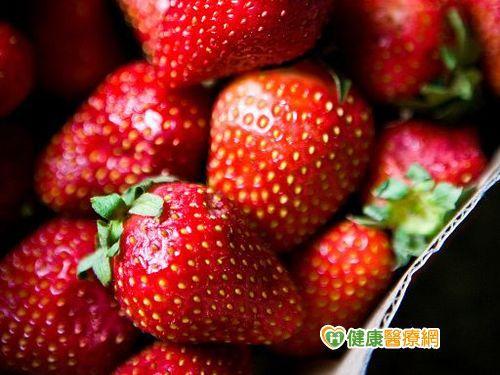 走春採果 小心吃草莓容易過敏!