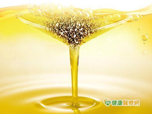 植物性Omega-3新選擇 奇異籽油含量豐富
