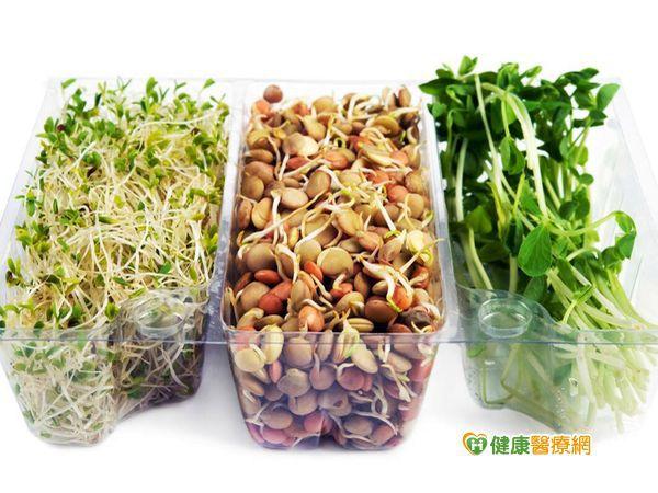 芽菜怎麼挑? 專家:直挺帶根較新鮮