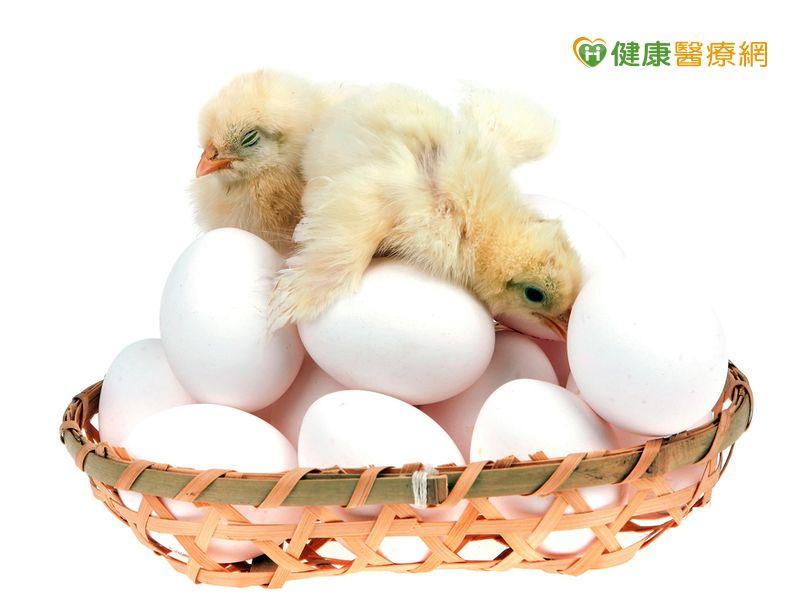 鴻彰蛋雞場曾易主 毒蛋原因可能在飼料